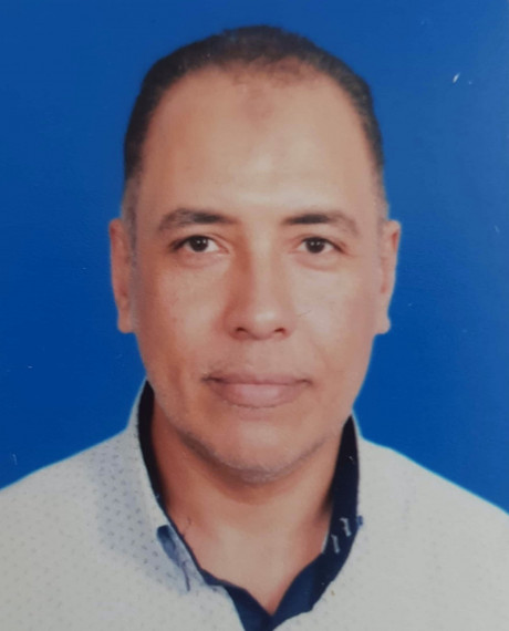 Mohamed Abdelmagid Abdelmawgoud Abdelmagid