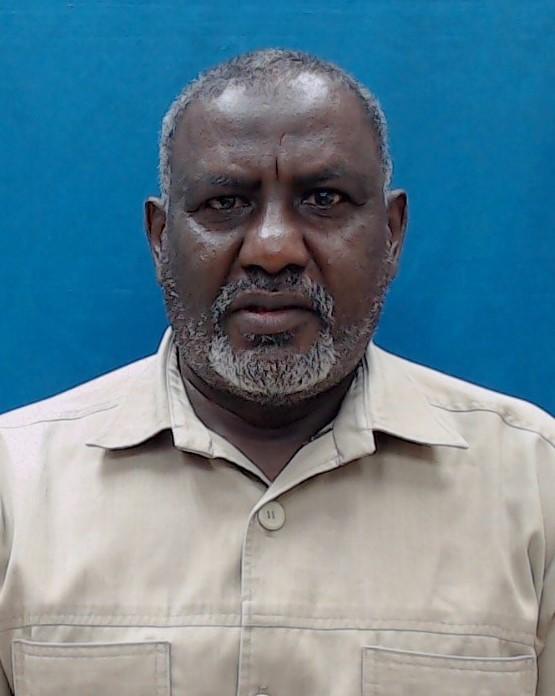 Mohamed Ahmed Hamed Ahmed Ali