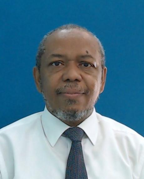 Nassereldeen Ahmed Kabbashi